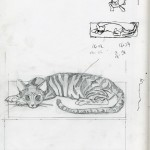 "CATS SKETCHBOOK by Matt 'Iron-Cow' Cauley - ""Nala Sketch"""