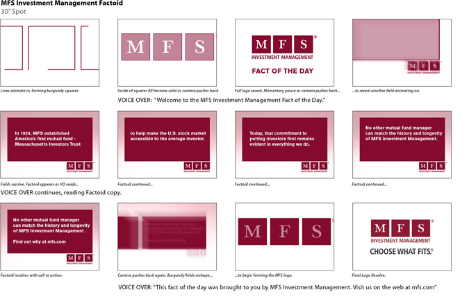 MFS Investment Storyboard