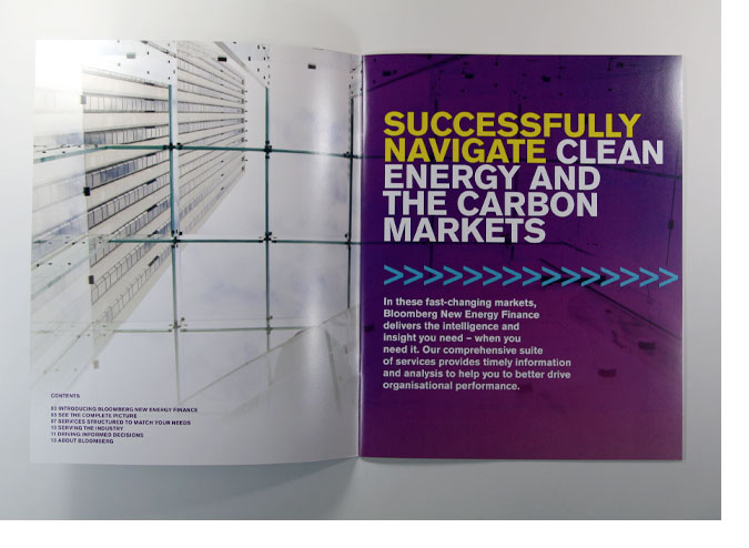 BNEF Company Overview 2