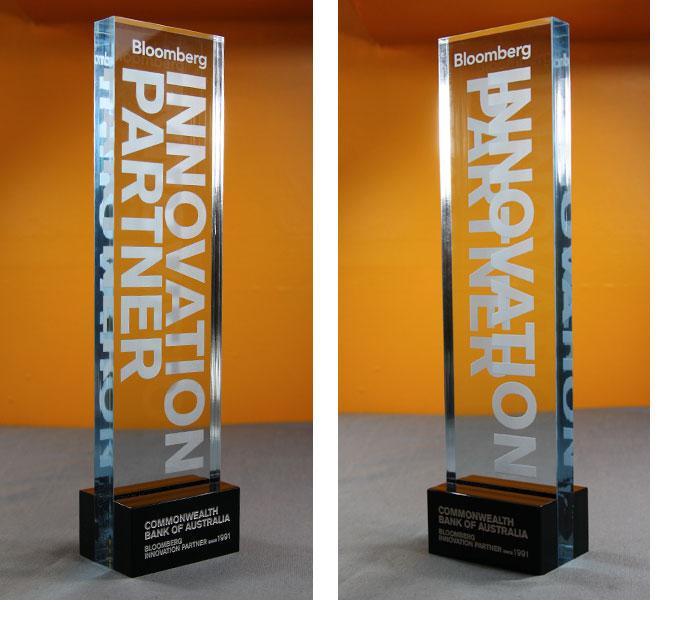 Innovation Partner Award